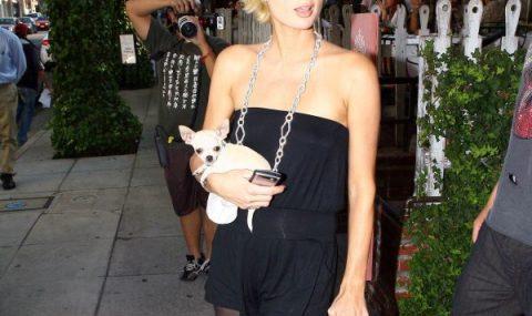 Paris Hilton con i collant neri